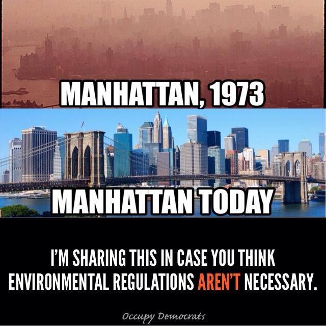 SMOG 1973 IN NYC