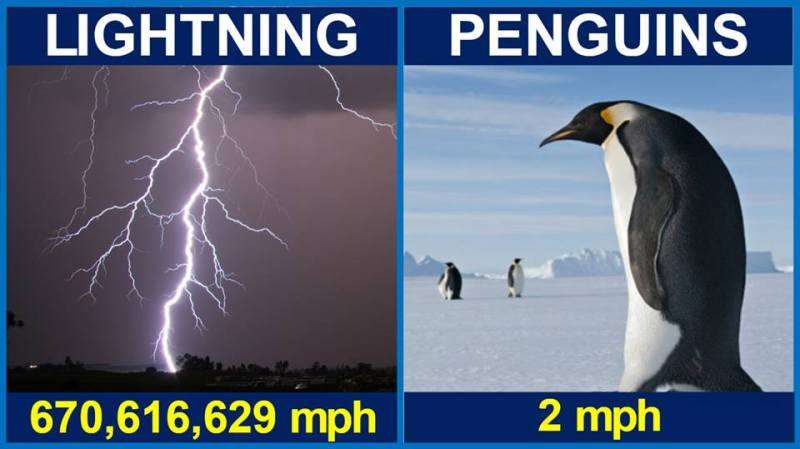 pens or lightening who is faster
