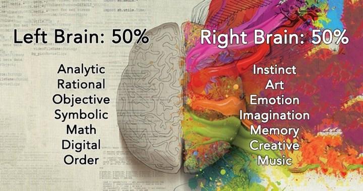 left and right brain .jpg